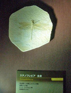 2012-09-10_5620.jpg